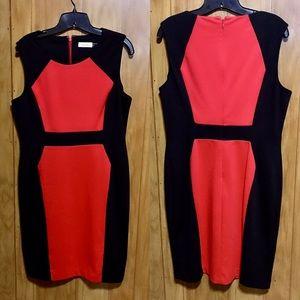 Calvin Klein Color Block Career Dress